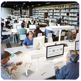 Computer Library Coordinator