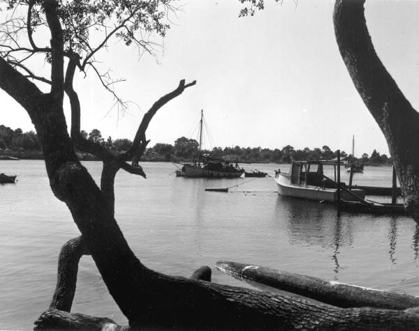 View looking toward sponge boat on the Steinhatchee River