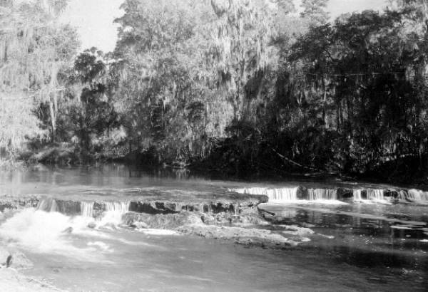 Falls of Steinhatchee River Circa 1934