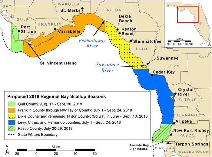 Steinhatchee is in the yellow area which mean our season starts June 16th and runs through September 10th.