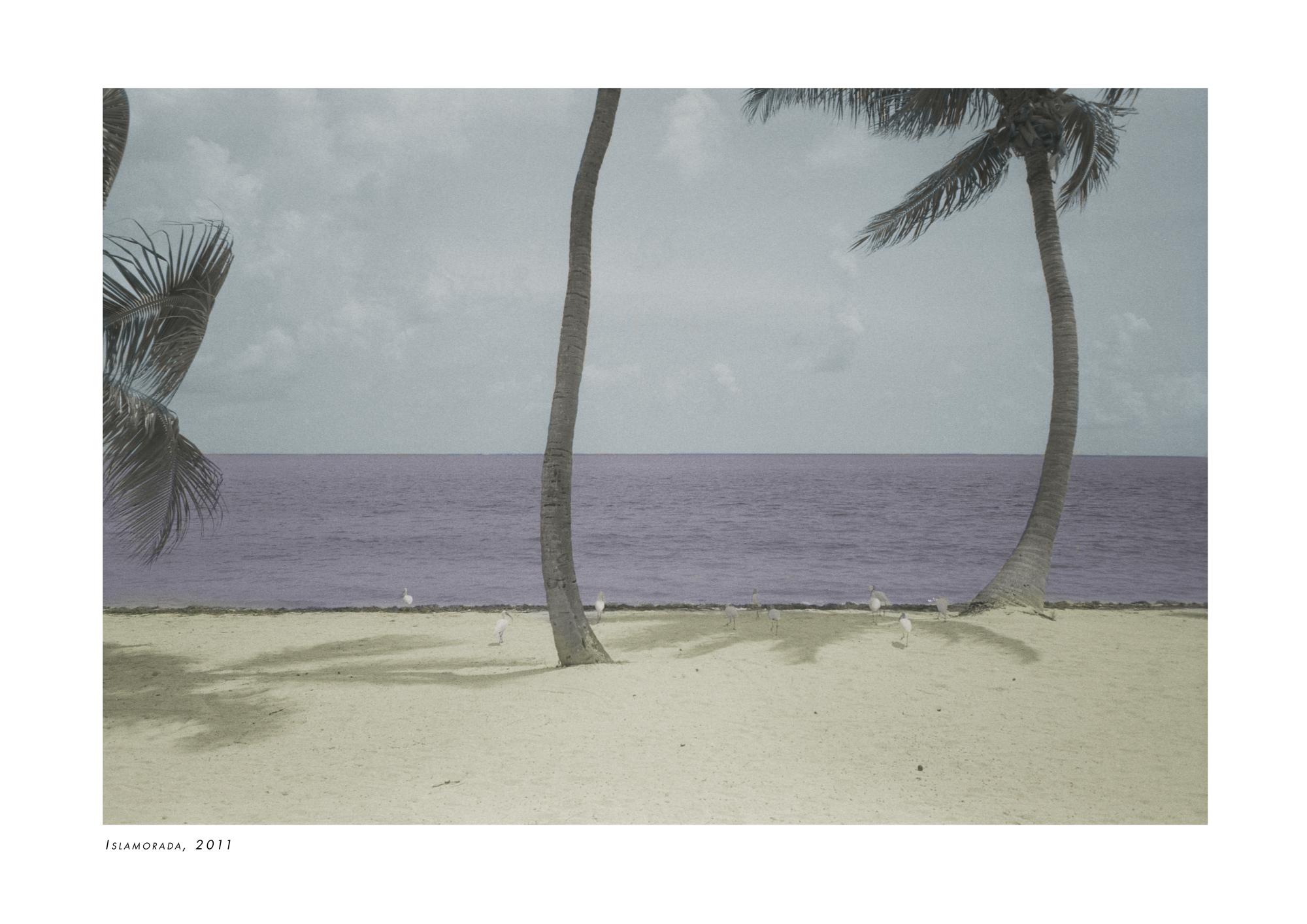 poster_02_2.jpg
