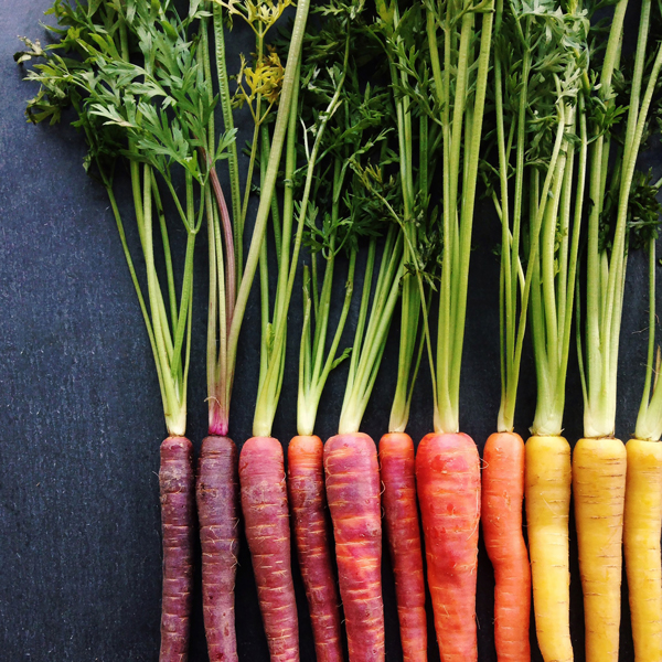 Carrot-Gradient_Brittany-Wright_wrightkitchen.com.jpg