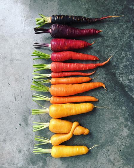 Carrot-Hug_Brittany-Wright_wrightkitchen.com.jpg