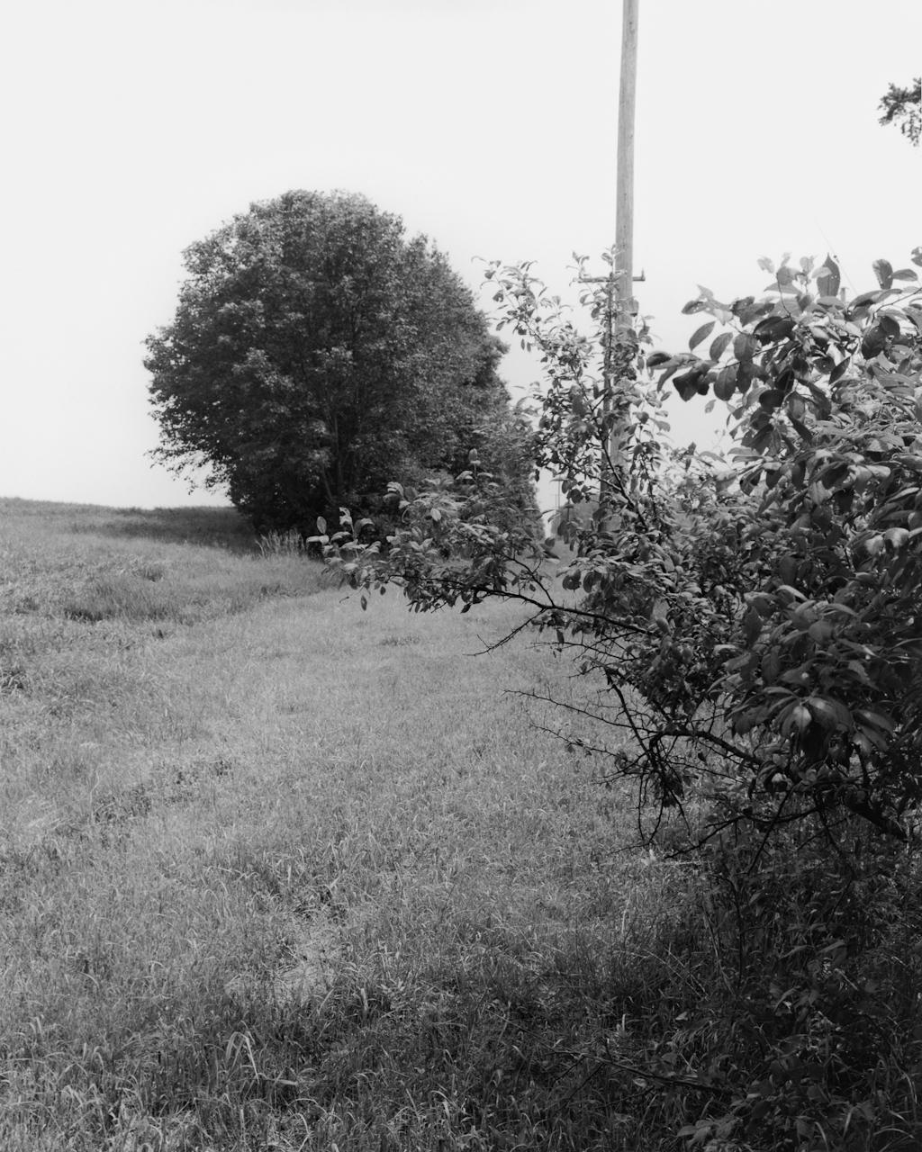 illinois-traction-20.jpg