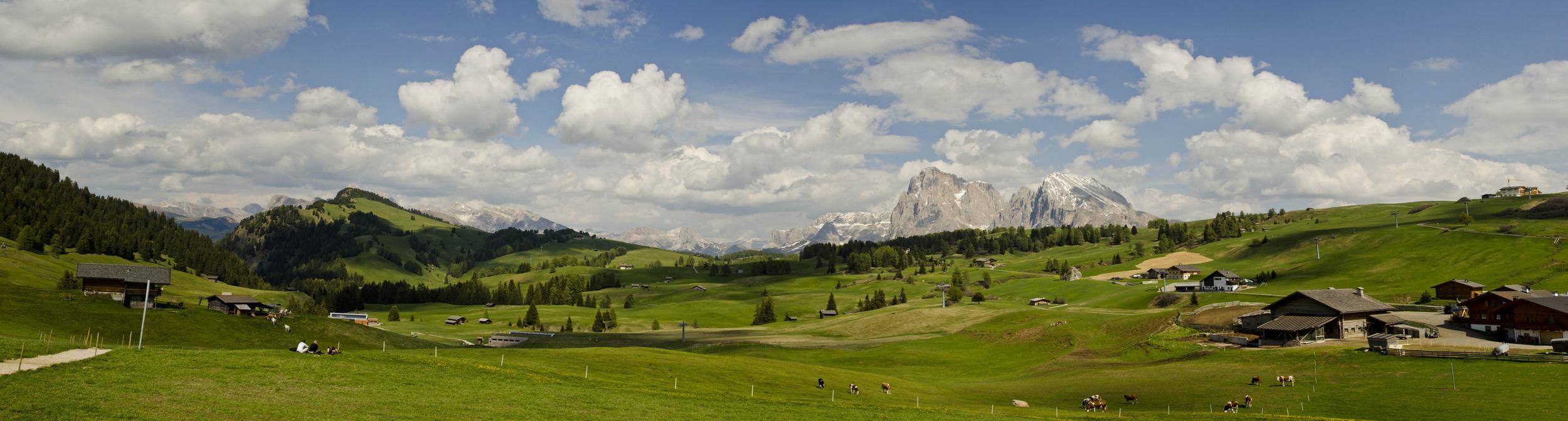 Alps_pasture_Panorama1_small.jpg