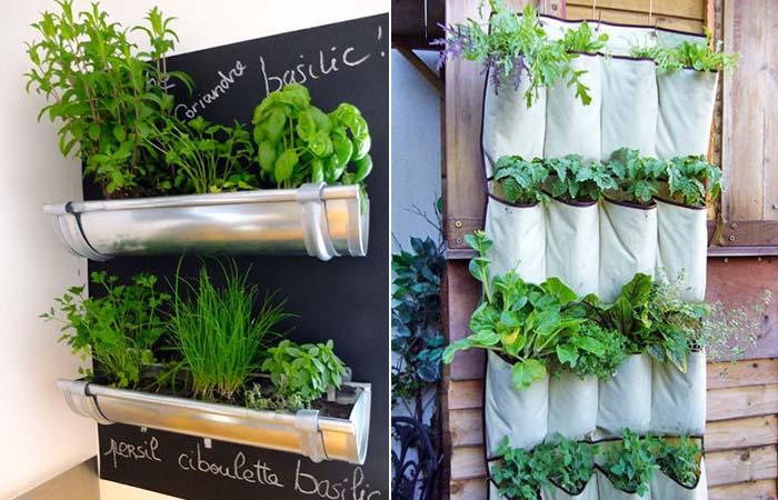 jardim-varanda-quintal-hortalicas