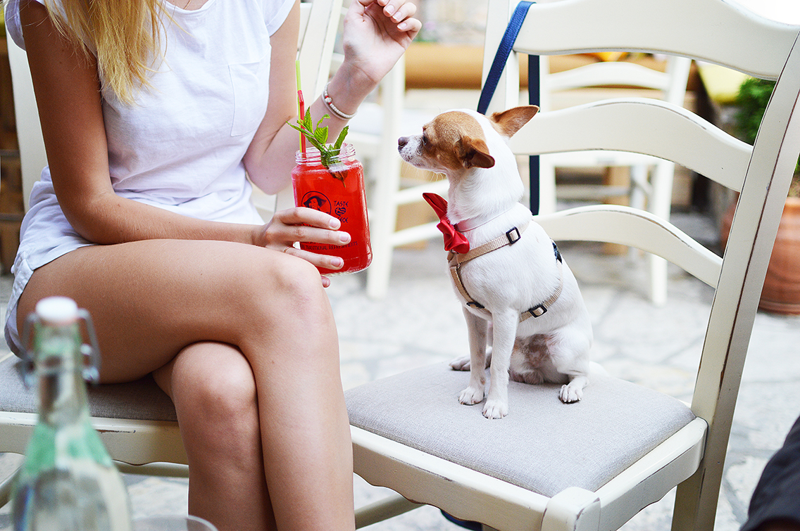 Woman and her dog at a restaurant