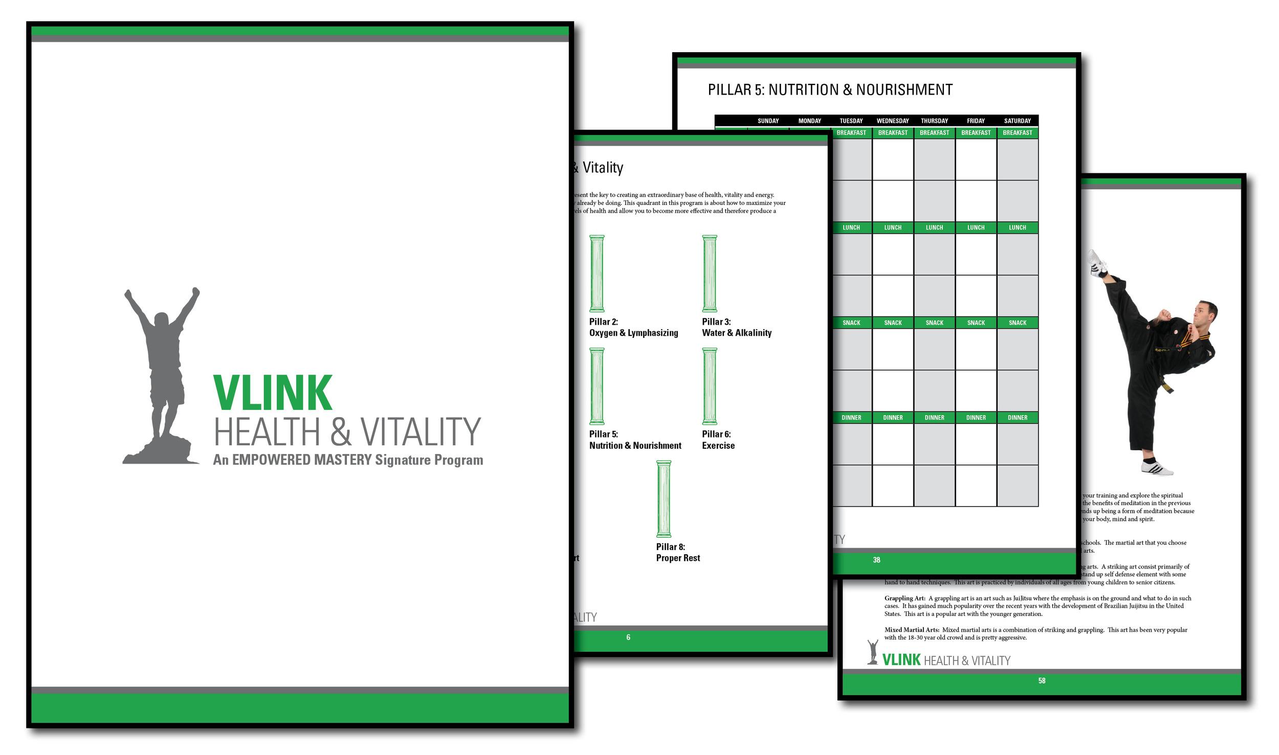 vlink sample.jpg