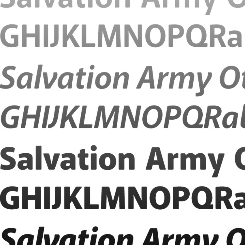 Salvation Army Others