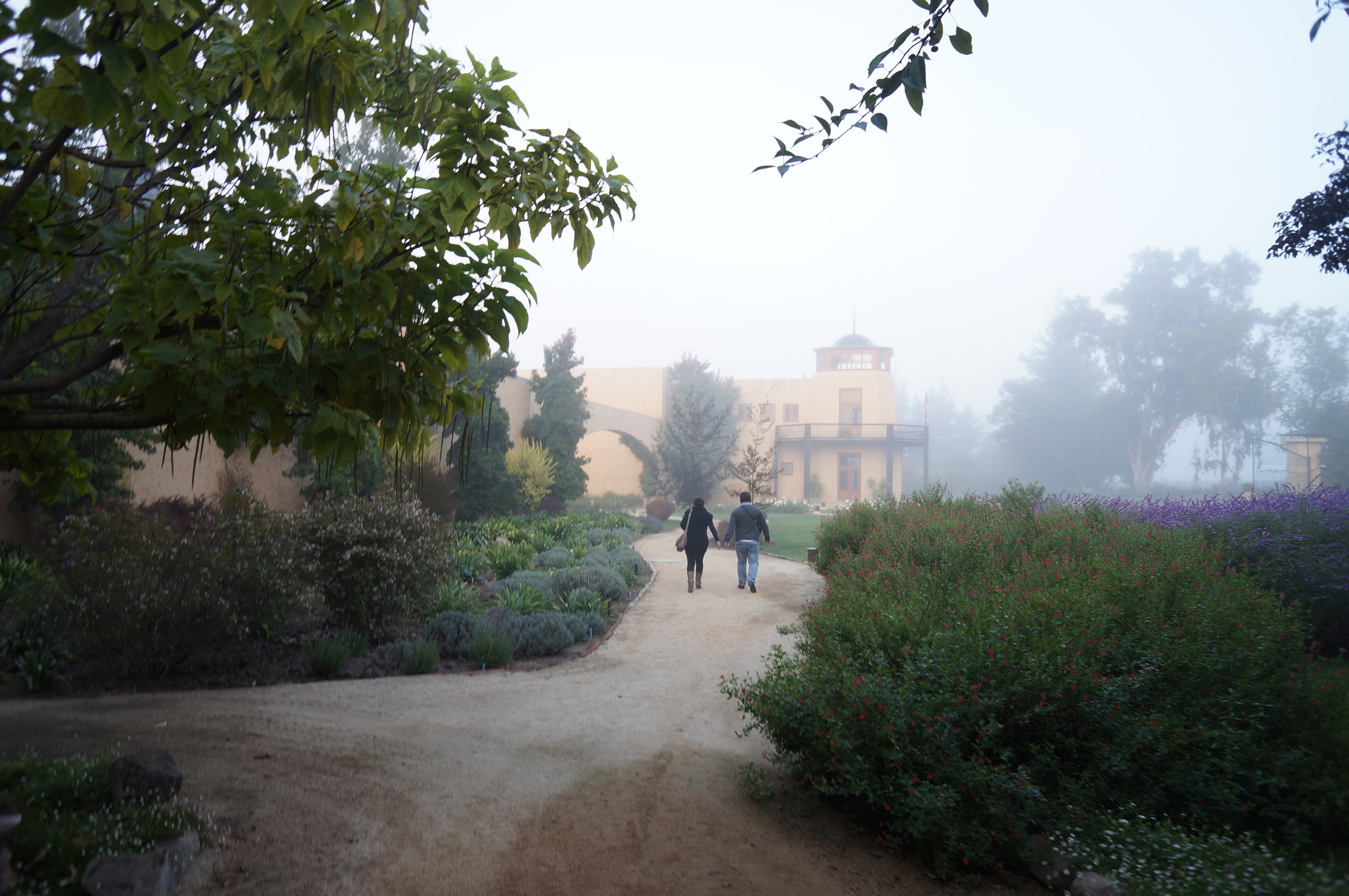 Poco a poco la neblina empieza a desaparecer para dar paso a una bella mañana.
