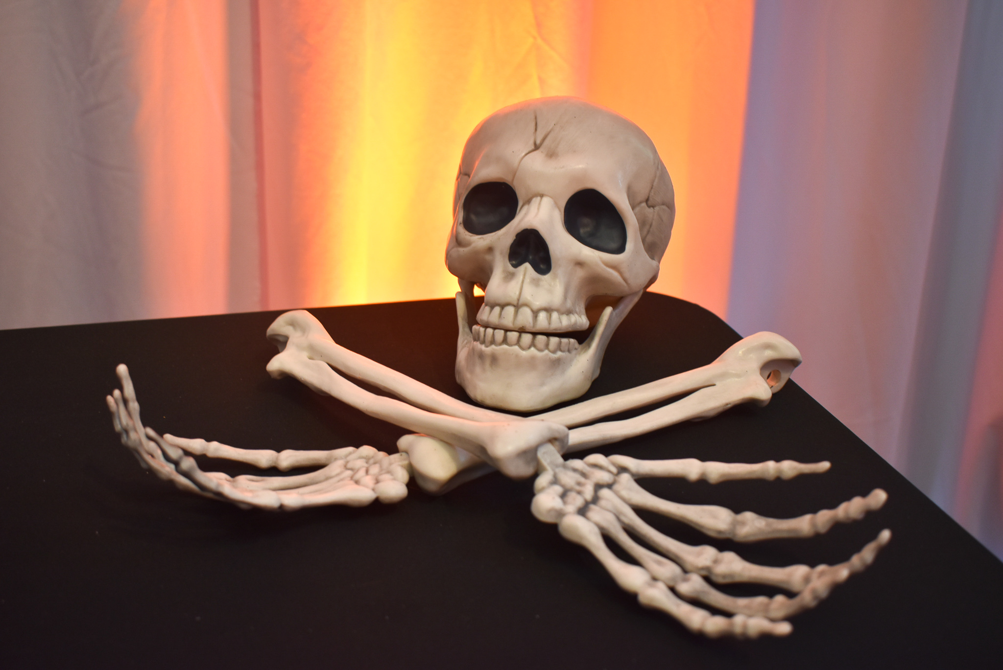Misc Skeleton Pieces
