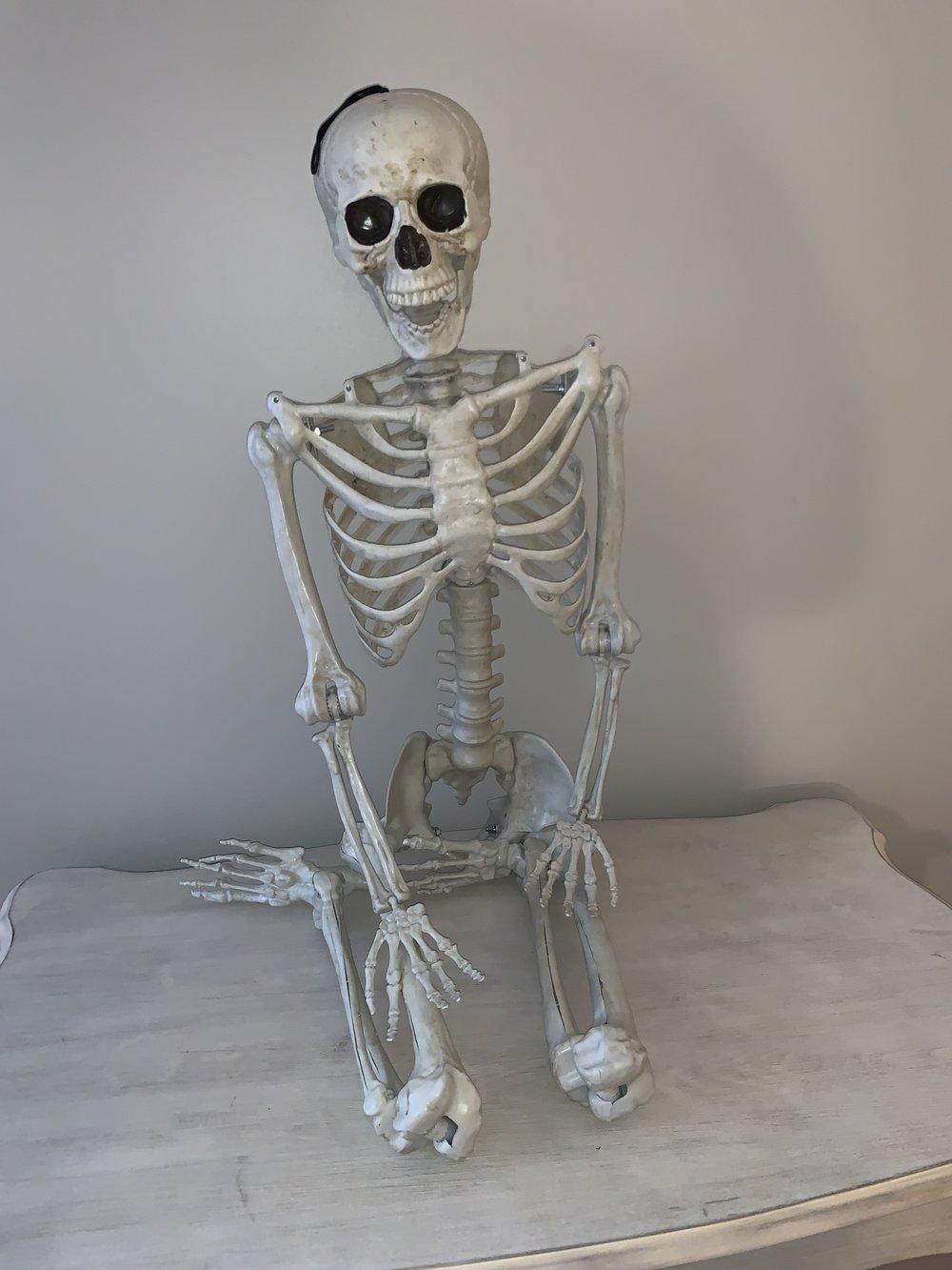 Full Size Skeleton (1)
