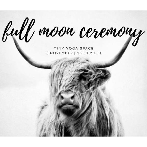 Copy of Copy of Copy of full moonceremony.png
