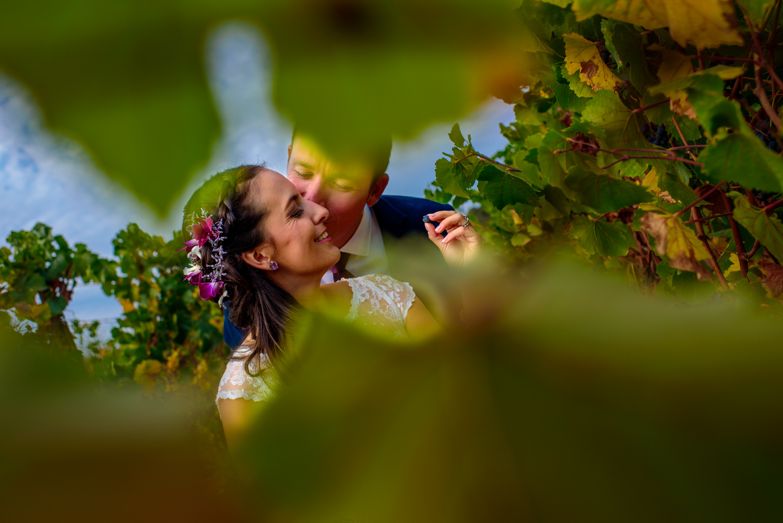 De Loach Vineyards Santa Rosa Winery wedding