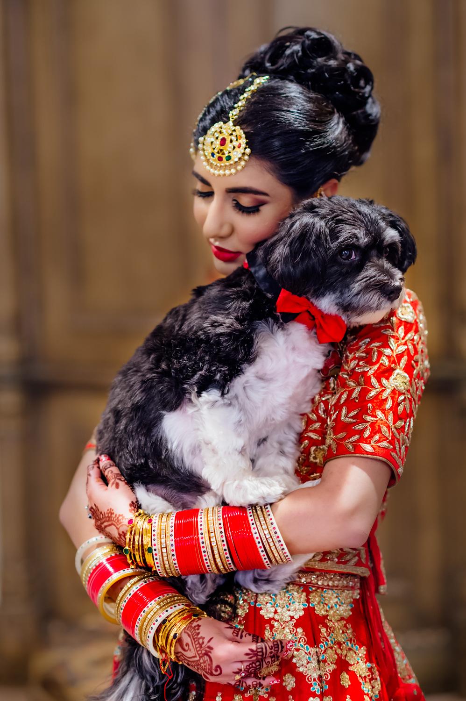 Beautiful Punjabi bride Stockton