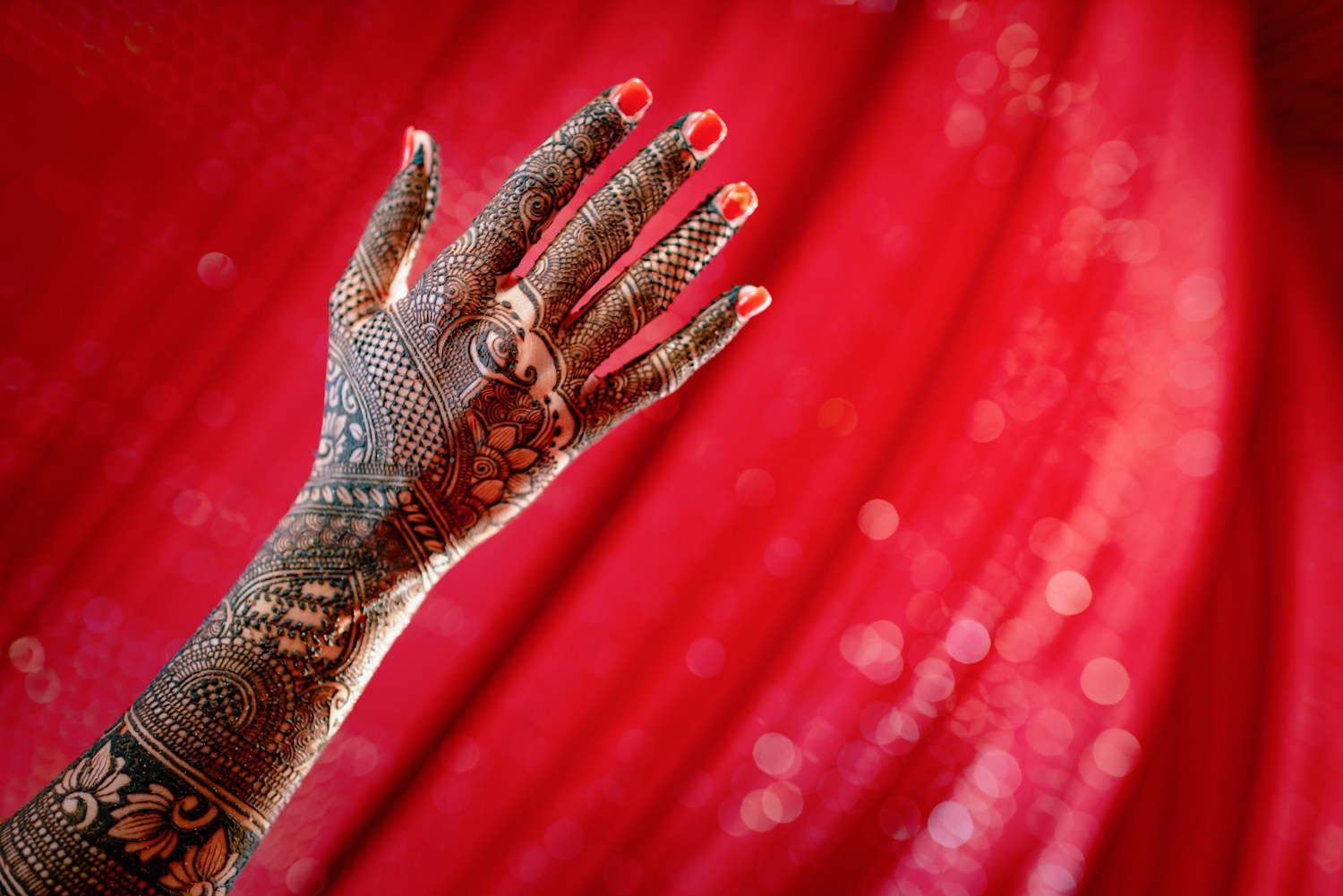 Indian Punjabi Mehndi Ripon