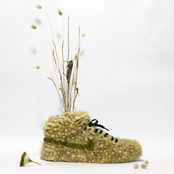 shoe_grasshopper1.jpg
