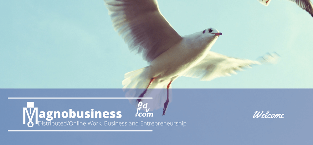 Welcome to Magnobusiness: Distributed / Online Work, Business and Entrepreneurship