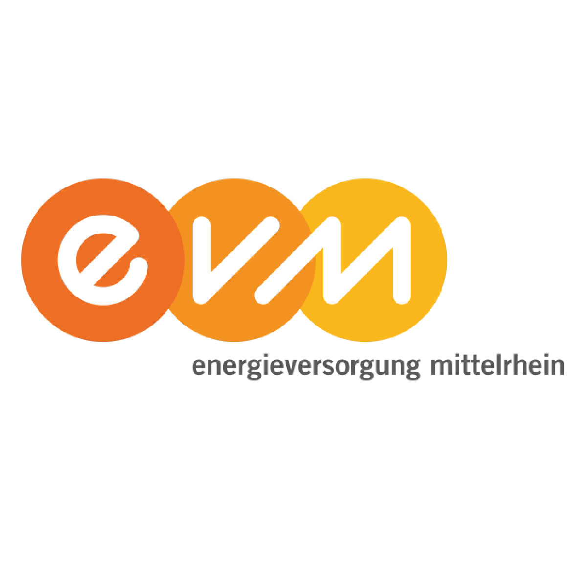 Logo_evm_Zeichenfläche 1.jpg