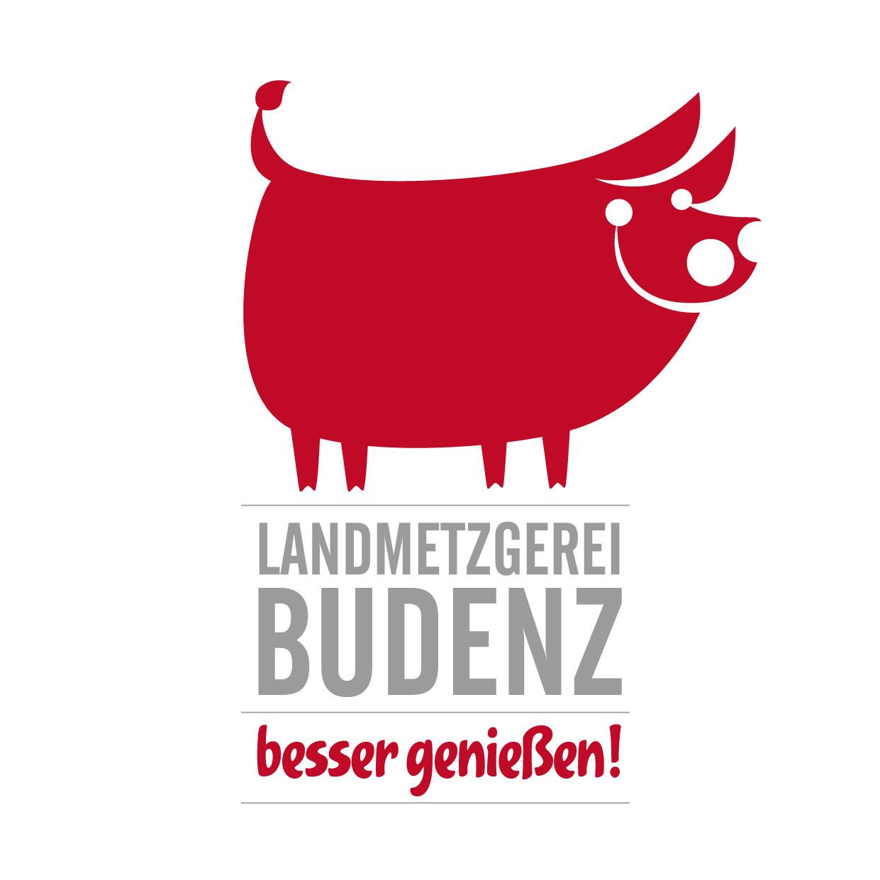 Logo_Budenz_Zeichenfläche 1.jpg