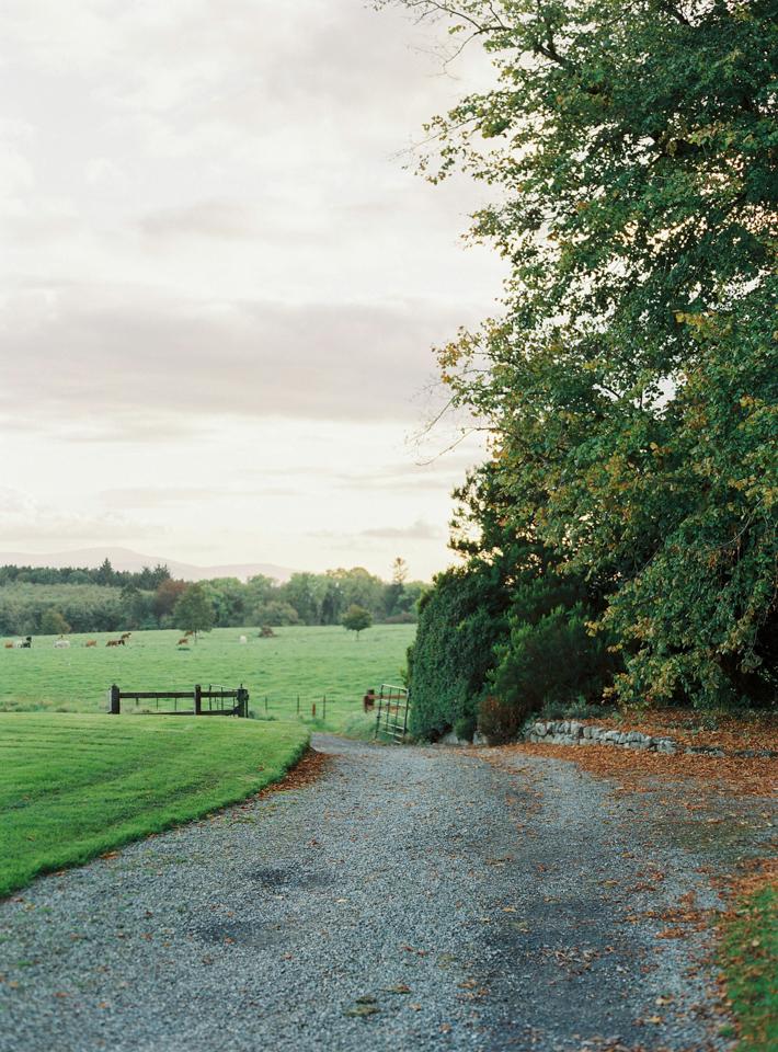 Ireland 11.jpg