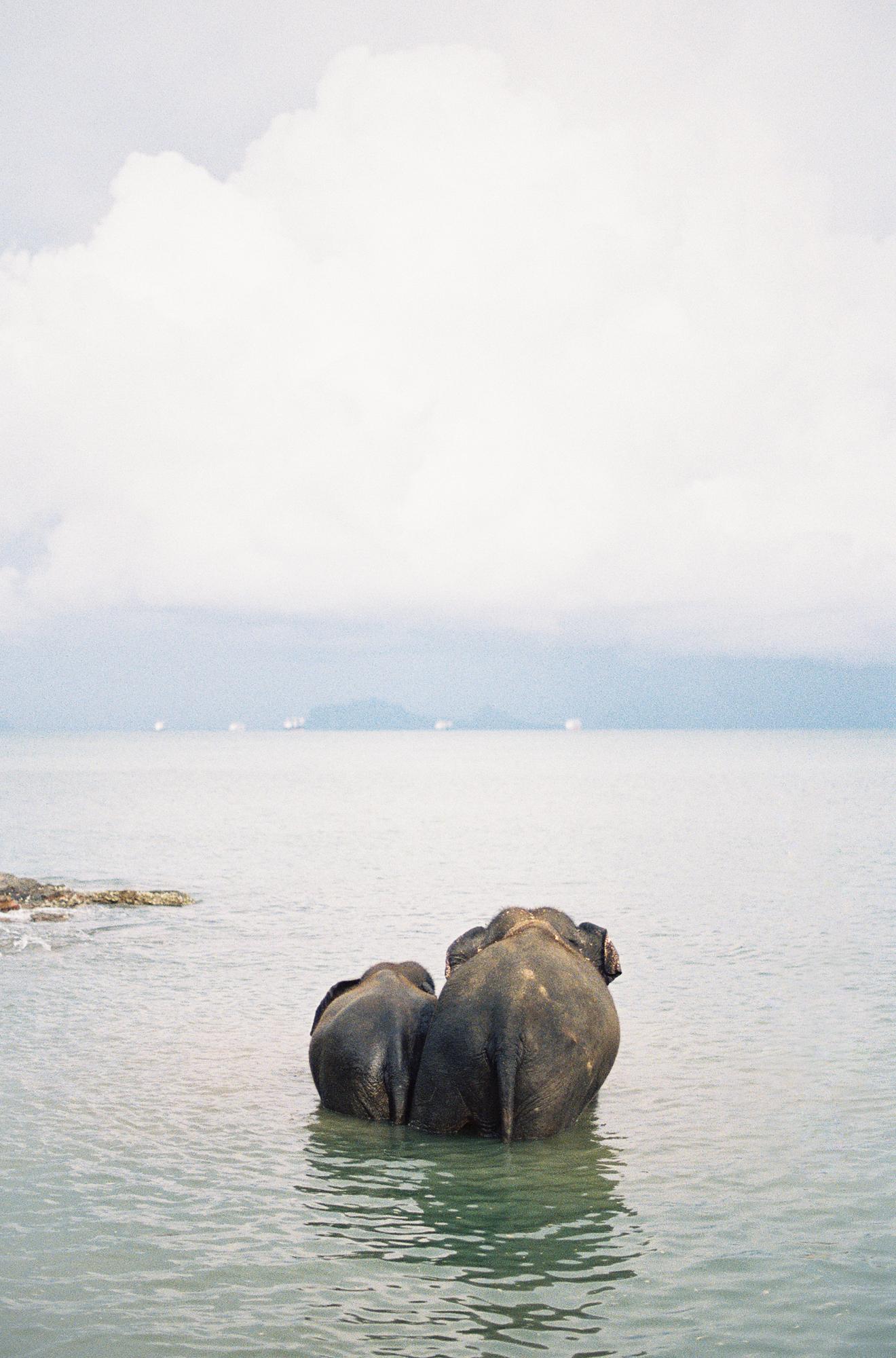 Thai010-Edit.jpg