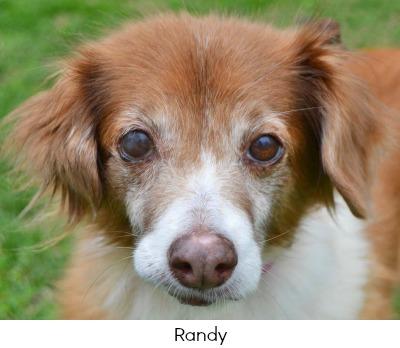 Randy