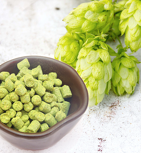 Whole Cone and Pellet Hops!