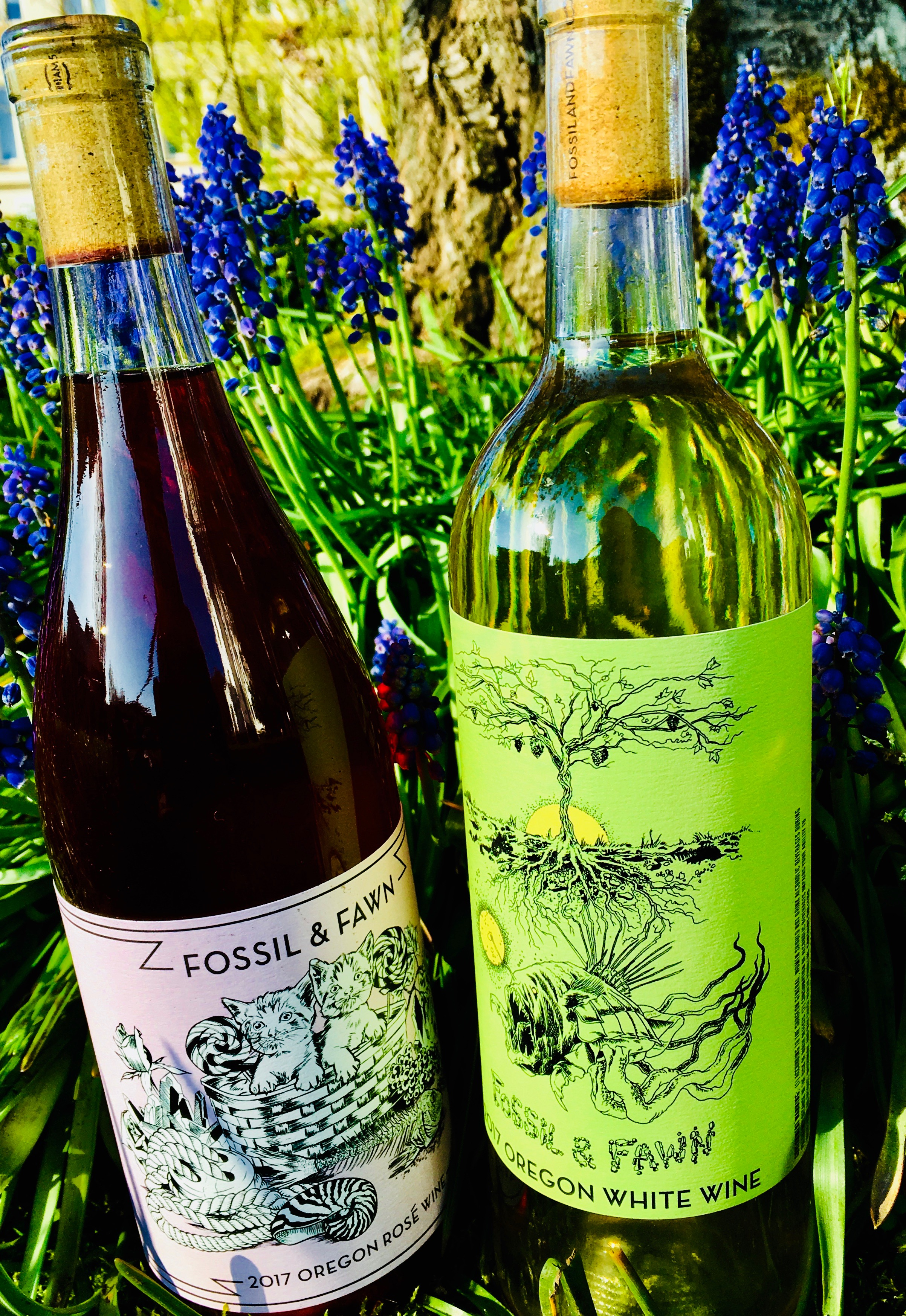 - Fossil and Fawns very dark rose of pinot noir and their eclectic Oregon white blend composed of 50% Riesling, 20% Savagnin Rose, 15% Gewürztraminer, 6% Fruilano, 6% Melon de Bourgogne, 3% Kerner