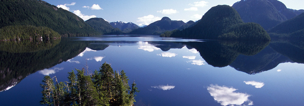 Wilderness dominates in British Columbia's Great Bear Rainforest one of the places where we work.