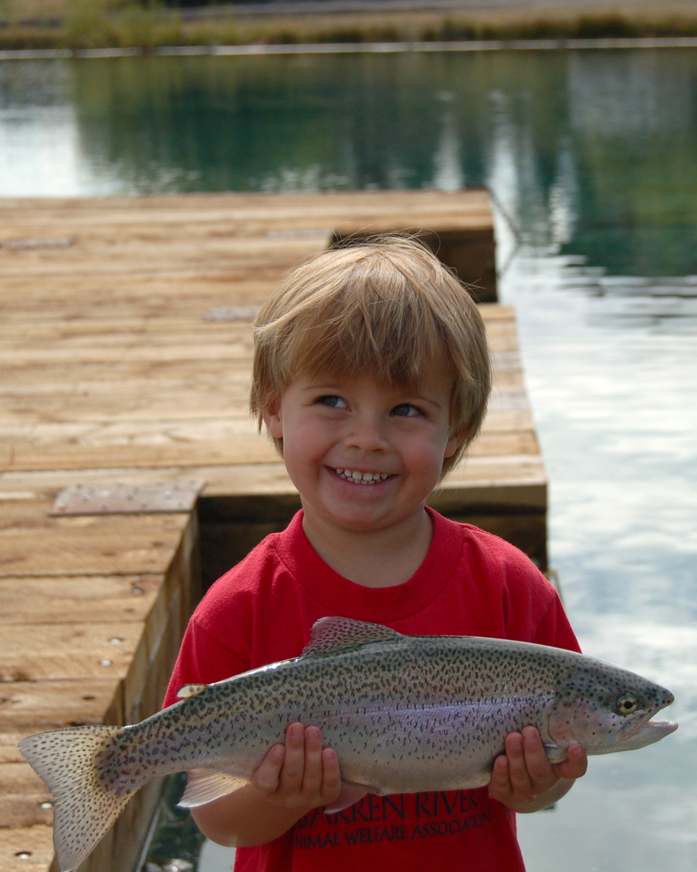 Rainbow trout, pond fishing