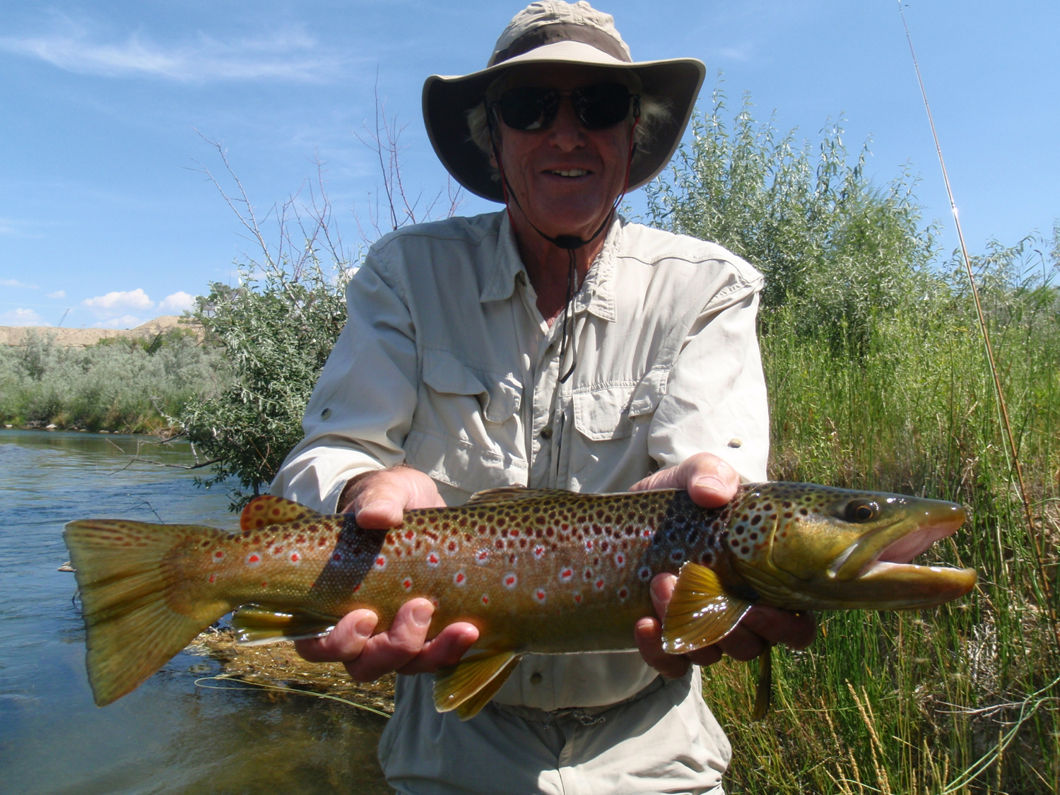 Large Brown caught on a hopper pattern