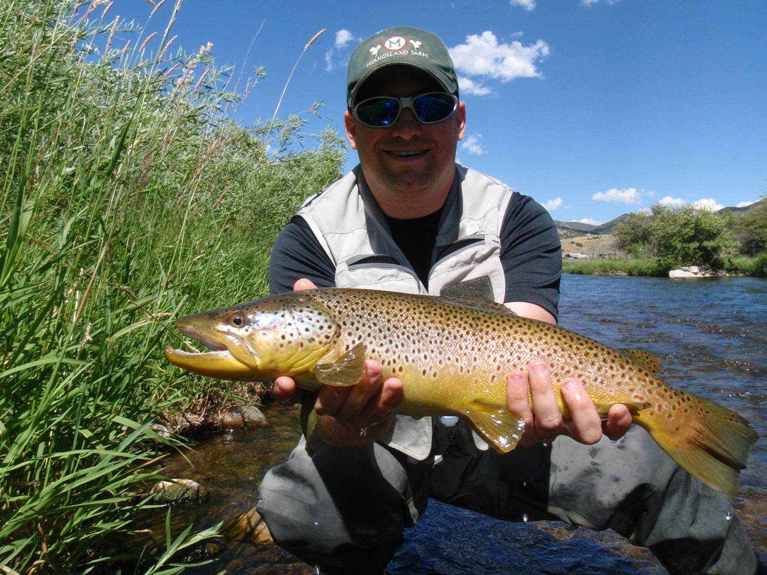 brown caught on the dry, Weber River