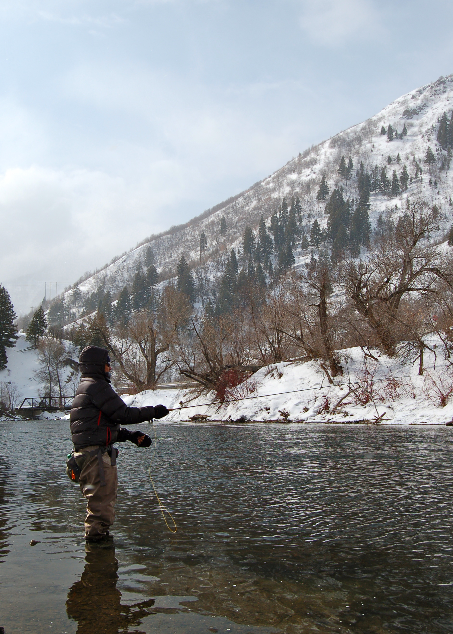 Ernie on the lower Provo River