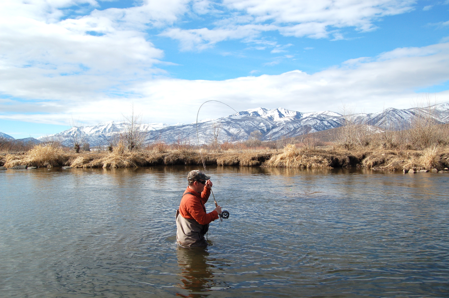 dry fly fishing on the middle Provo River