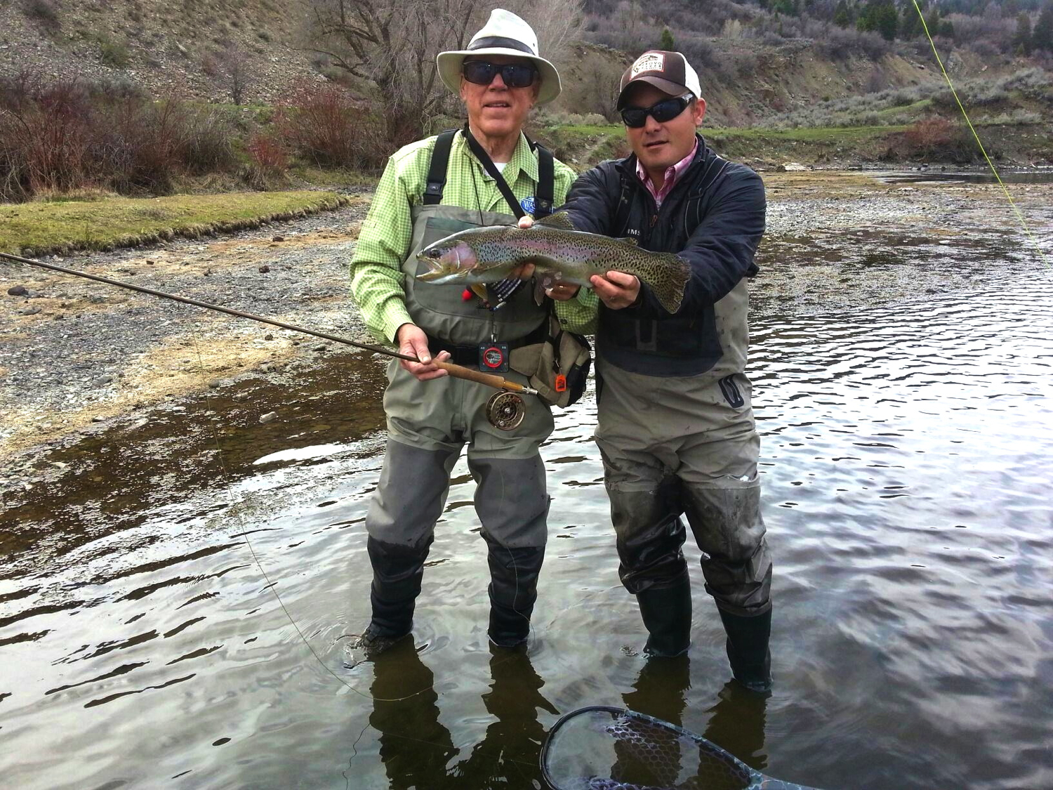 lower Provo River, rainbow trout