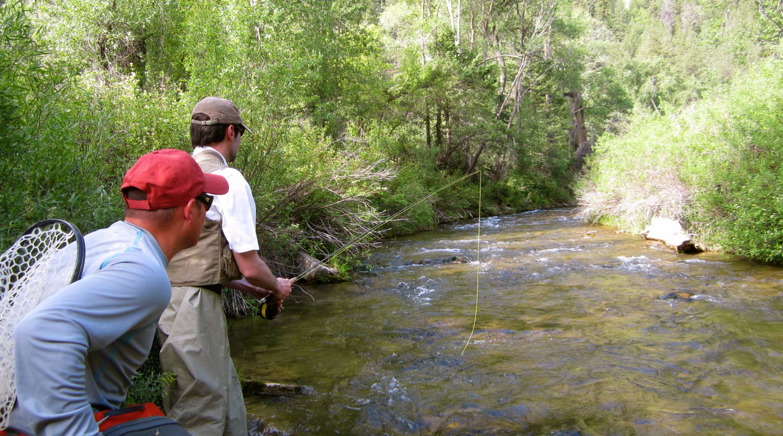 small streams dry fly fishing