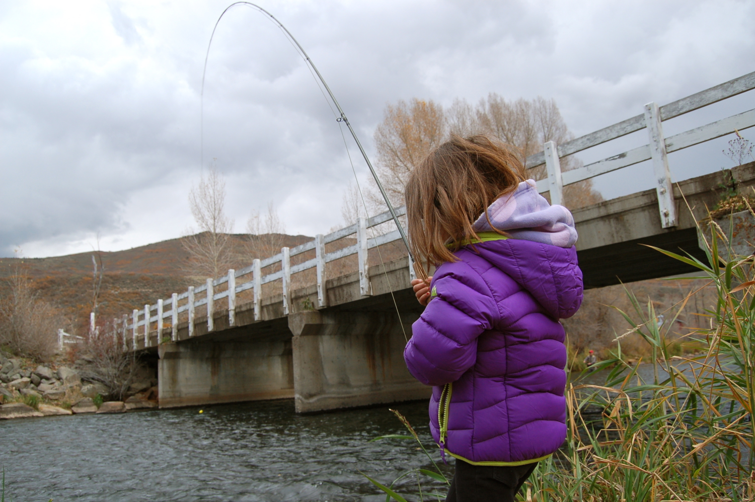Fall fly fishing with Finley