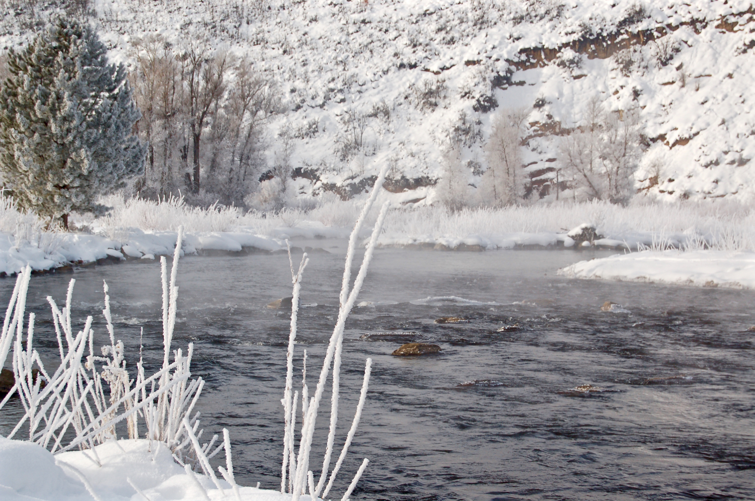 early morning on the Middle Provo River