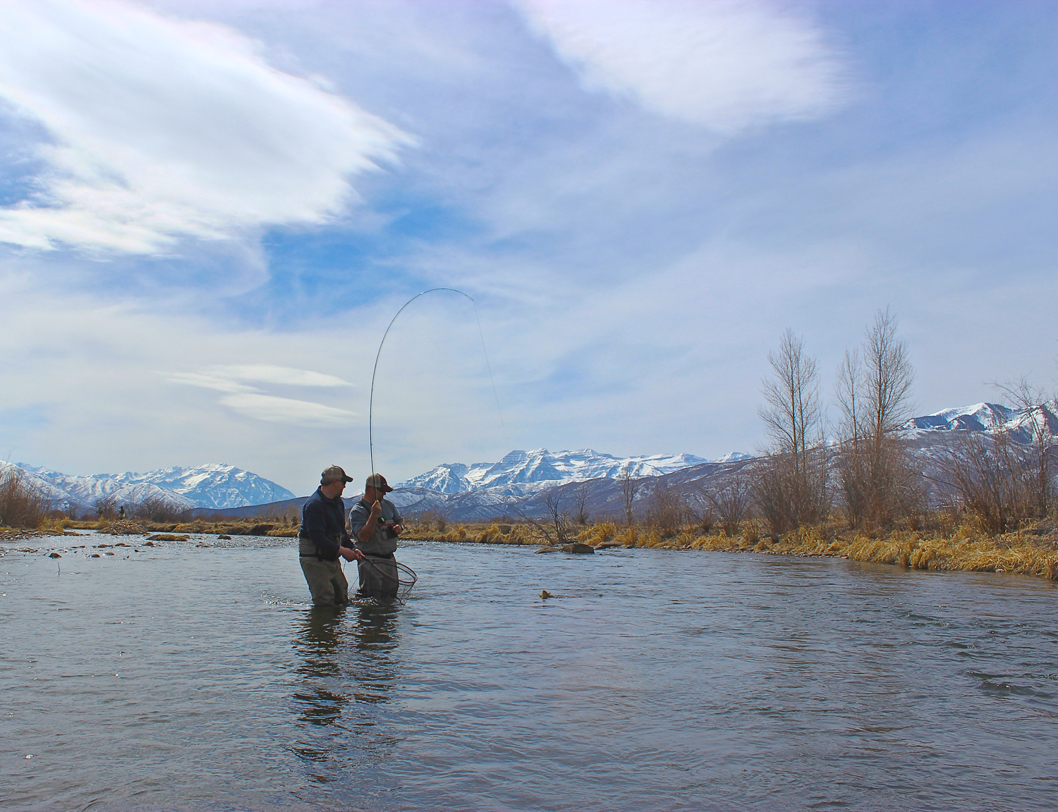 Hooked up on the Middle Provo, Dead Raccoon Hole