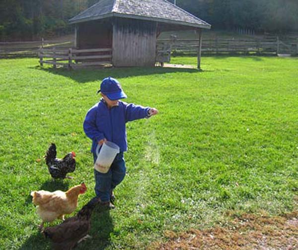 FarmKid.jpg