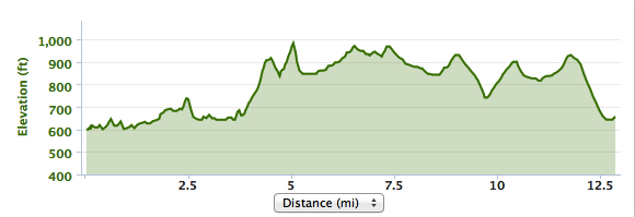 Little bumps for a few hot and dusty miles then the long climb out.... In the dirt.