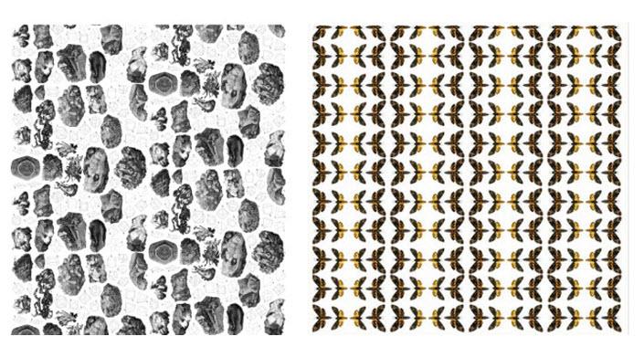 Minerals-Geology-Moths-Removable-Wallpaper.jpg