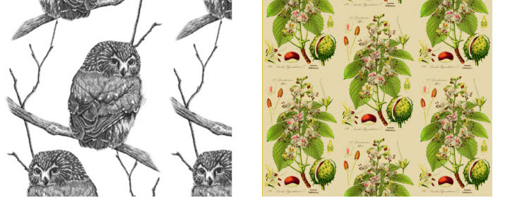 Owl-Chestnut-Removable-Wallpaper.jpg