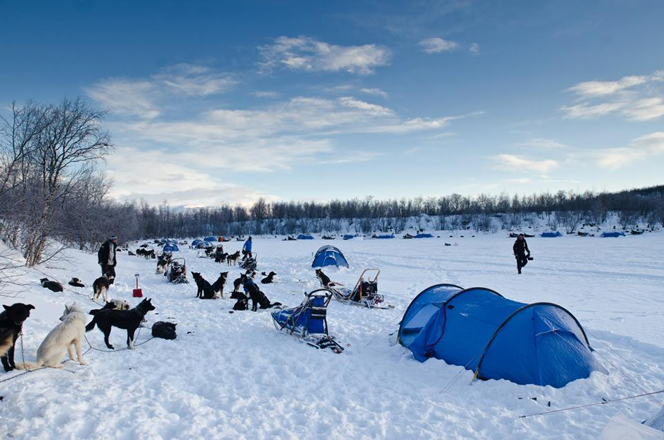 By the time Team-Sweden USA arrives at our Day 4 campsite on the frozen Lake Kattujärvi, most of the other teams have already pitched their tents and started to prepare dinner for the dogs.  (Photo by Håkan Wike for Fjällräven International. All rights reserved.)