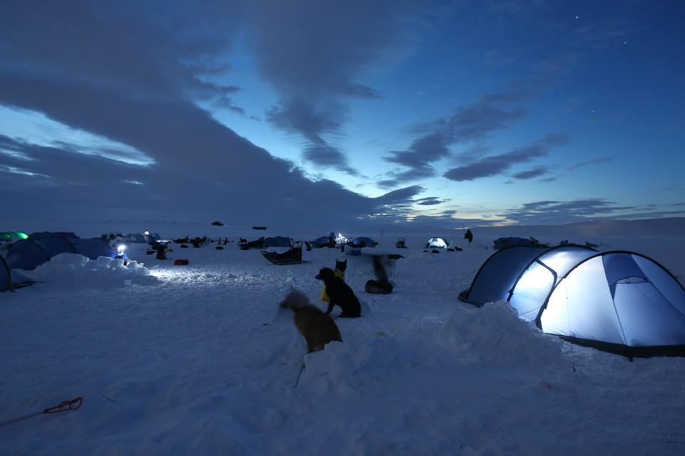 Day 3 of Fjällräven Polar is long and grueling. There's much to be done to make camp and care for the dogs before we prepare our own dinner and crawl into our sleeping bags. (Photo by Jun-Hee Cho. All rights reserved.)