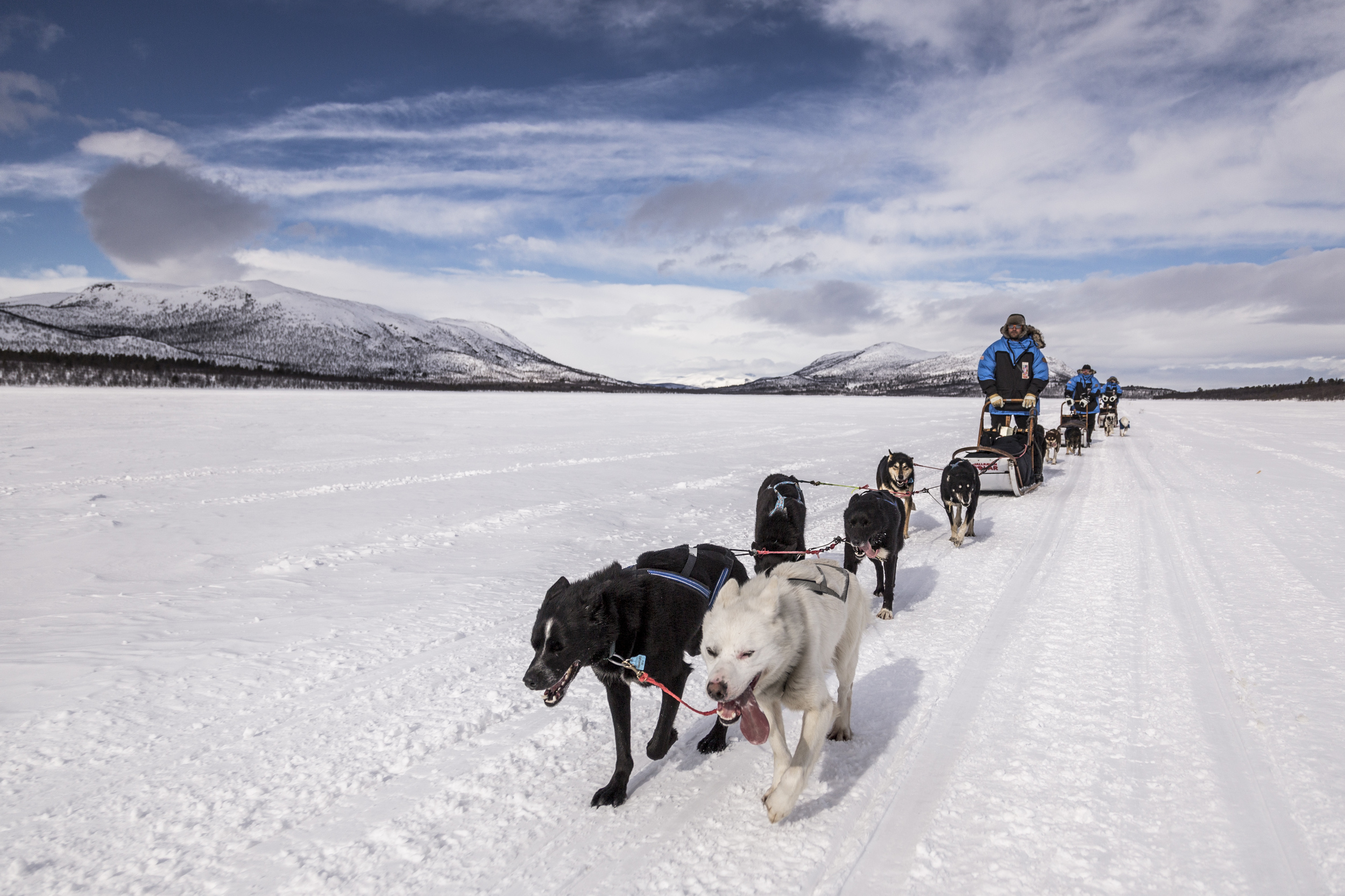 The flat frozen lakes, although windy, provide an opportunity for dogs and sledders both to relax a bit. It's the forests that require full concentration. (Photo by Håkan Wike for Fjällräven International. All rights reserved.)