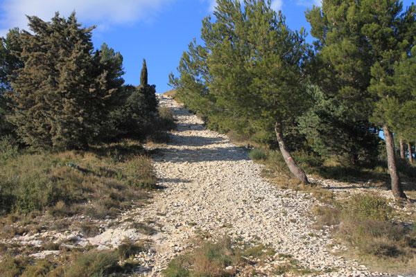 trails_3769.jpg