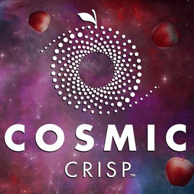 Identity-Cosmic-Crisp.png
