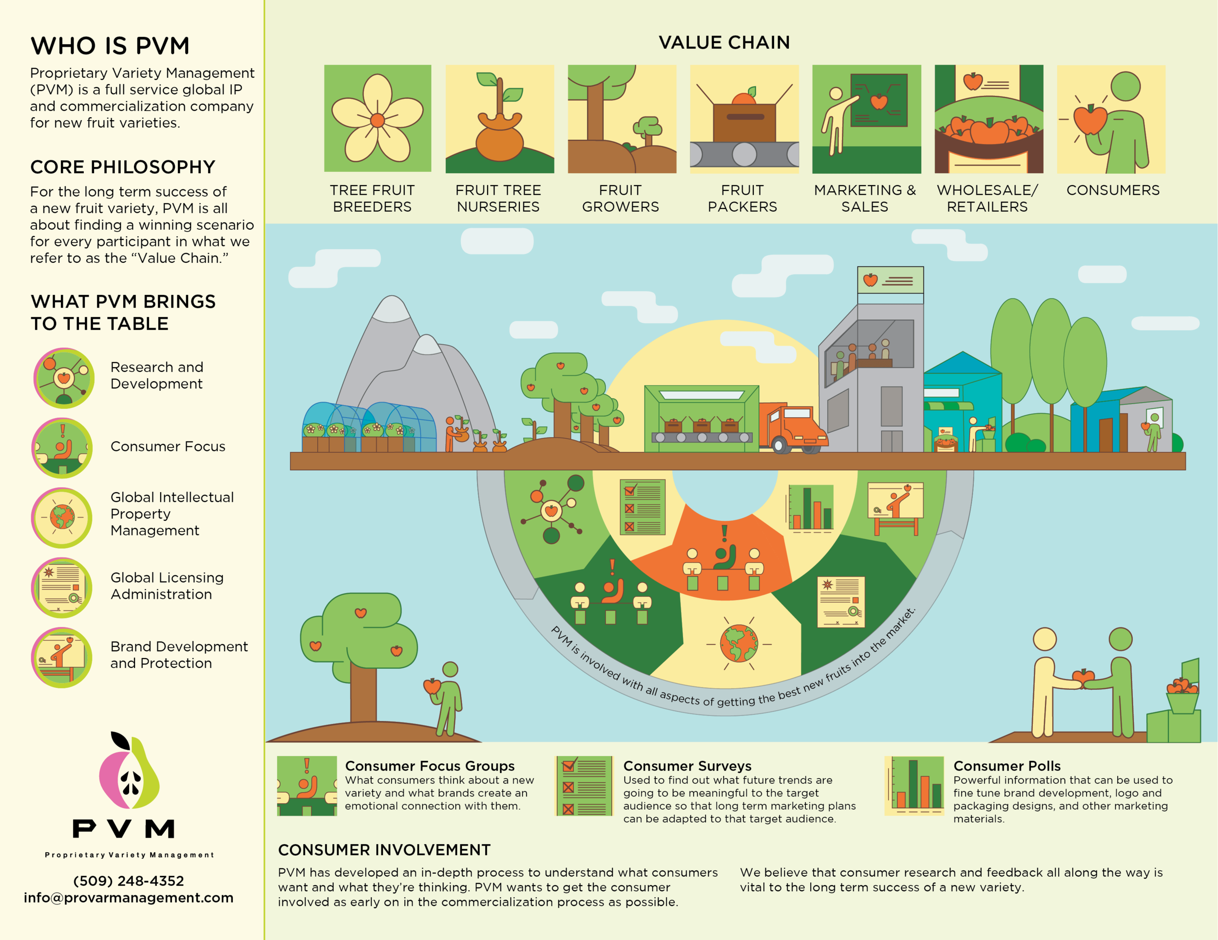 pvm-value_chain-infographics.jpg